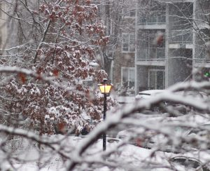 Disability and the winter weather